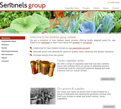 Sentinels Group