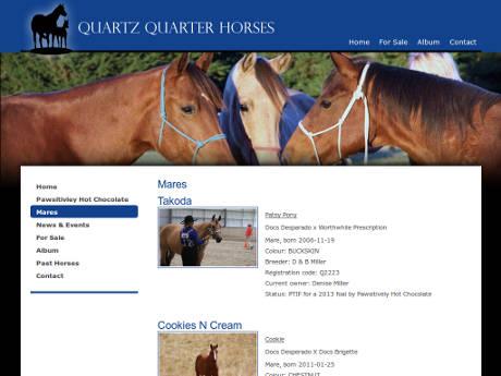 Quartz Quarter Horses